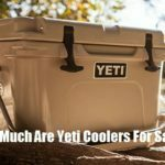 Why Are Yeti Coolers So Expensive & Are They Worth It?